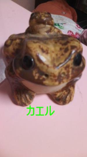 120107_172801